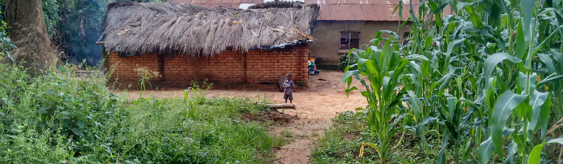 Stichting Steun Malawi
